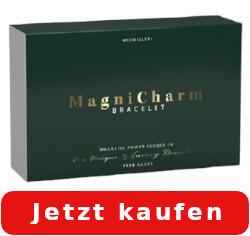magnicharm bracelet kaufen